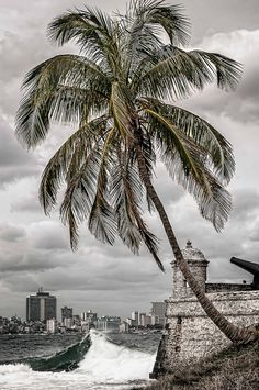 '' Cuba ''