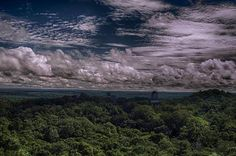 Tikal. Photo by Carl