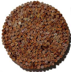 Teabag art, so beautiful. gilbertDIY.wordpress.com pinterest.com/gilbertDIY