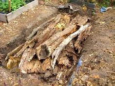basics of hugelkultur - using rotting wood as a base for a garden - water saving, humus-making