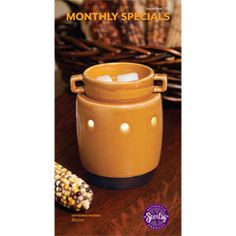 Check me out at www.kaylacantwell.scentsy.us   !!!