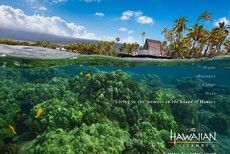 Living in the moment on the Island of #Hawaii the #bigisland. Download this and other wallpaper here.