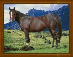 Free Horse Cross Stitch Patterns