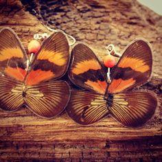 Real butterfly earwings  www.artesano-jewels.com