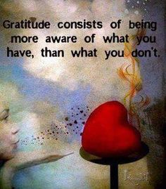 Gratitude consists of being more aware of what you have, than what you don't