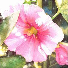 Amanda Spencer Watercolor watercolor
