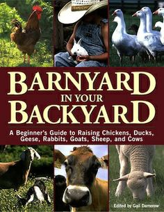 Barnyard in your Backyard 250 #FCThankful