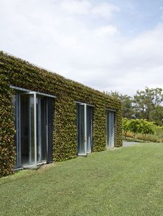 Greenwall exterior of a home in Australia