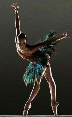 Perfection peacock feathers, costum, ballet dancers, black swan, art, beauti, beauty, bird of paradise, birds
