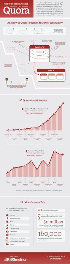 Infographic : The Wonderful World of Quora