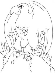 a spreading wings bald eagle coloring page | Download Free a spreading wings bald eagle coloring page for kids | Best Coloring Pages