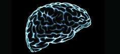 9 Ways to Instantly Strengthen Your Brain
