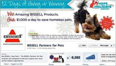 Consumers can do even more to support homeless pets this holiday season by participating in the Partners for Pets' Hope for the Holidays Contest. One P4P Facebook fan can designate a donation of $1,000 each day, from Dec. 9 through Dec. 20, to the P4P member organization of their choice and win a Bissell product.