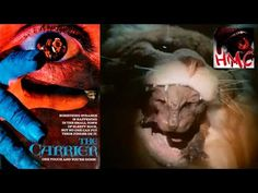 The Carrier (1988) Drama, Horror, Thriller [USA:R, 1 h 39 min] Gregory Fortescue, Stevie Lee, Steve Dixon, Paul Silverman Director: Nathan J. White Writer: Nathan J. White https://www.youtube.com/watch?v=ya0BvoqsKWw&feature=youtu.be IMDb rating: ★★★★★★☆☆☆☆ 5.9/10 (210 votes)