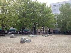 Great dog Park in the South End