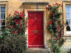Red Irish door