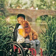 Happy #NationalPuppyDay #Quickie #Wheelchair