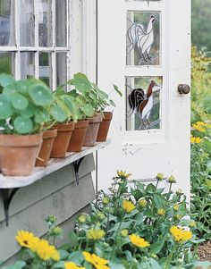 Tips for Container Gardening:   Learn how to design welcoming entryways and colorful nooks with our top 10 ideas for planters, window boxes, and hanging baskets.   3. Expand Your Options		  For a backyard entrance, choose plants that tolerate sun and shade to expand placement options around windows and doors.