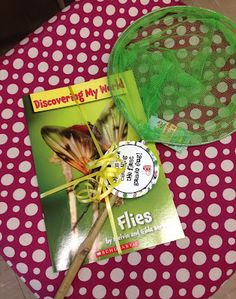 """Erica Bohrer's First Grade - cute end of year gift (insect book with bug net and saying """"Thanks for catching the first grade bug!"""")"""