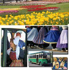 Tulip Festival, Holland MI