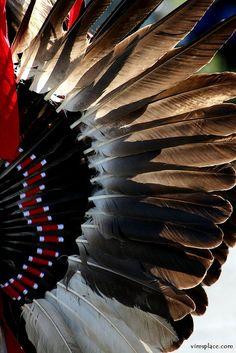 Native Dancer