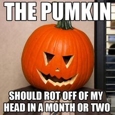 Dwight Schrute and the pumpkin / The Office