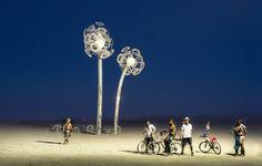 White Flower in the Desert -- Burning Man 2010 -- Stuck in Customs