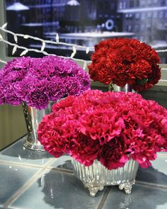 Monochromatic Carnation Arrangements  When high-quality carnations are tastefully arranged, they can be an eye-catching, sweet-smelling, and long-lasting addition to any room. In fact, carnations are one of Martha's very favorite flowers.