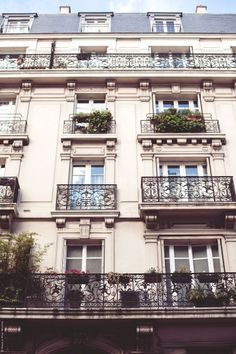 looking up in paris / photo by carin olsson