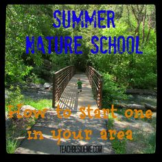 Summer Nature School- start your own!