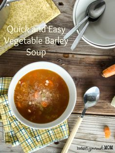 Vegetable Barley Soup {www.budgetgourmetmom.com}