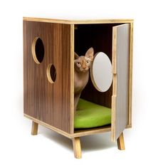 Modern midcentury kitten lounge/litter box
