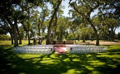 Summer wedding in the Grove.