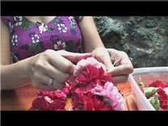 Making Hawaiian Leis : How to Make a Carnation Flower Lei