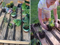Plant a DIY Pallet Herb Garden >> http://blog.diynetwork.com/maderemade/how-to/how-to-make-a-pallet-garden/?soc=pinterest