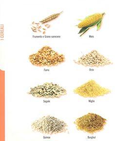 ⇒ Le nostre Bimby Ricette...: Cereali e Legumi