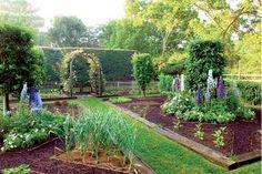 #garden, kitchen garden