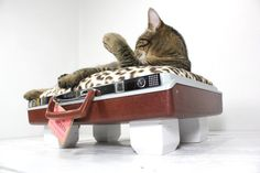 Upcycled Maroon Suitcase Pet Bed Handmade Wood Legs by AtomicAttic, $69.00
