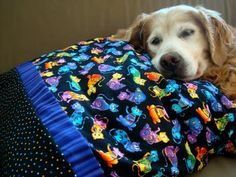 sausag, pillow case, pet