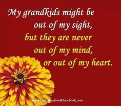 #grandchildren #heart #love #grandparent #quote #precious heart, grandkid, quotes, famili, grandma stuff, grand kids, grandchildren, grandparents, grandpar quot