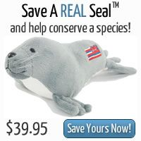 """SAVE A REAL SEAL™  HELP CONSERVE A SPECIES. Become part of the effort to save the Hawaiian monk seal. Link with a real monk seal in the Hawaiian Islands  scientists working to save them. Adopt a plush seal  describe your ocean conservation ideas or nominate a """"marine hero,""""  you will be given responsibility for one of the last remaining tropical seals. There's only one toy for each of the 1100 remaining monk seals in the wild, each tagged with its unique NOAA ID. This is YOUR seal to save."""