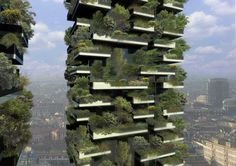 The world's first vertical forest, Bosco Verticale in Milan, designed by architect Stefano Boeri. The towers will host over 900 trees.  The plants will provide a 10,000 square meter vertical forest. The plants help produce oxygen, humidity, absorb CO2 and dust particles, and protect the building from radiation. A filtering system helps to recycle water for the maintenance of the plants. This design will allow for an increase in quality of living and a reduction in energy usage.