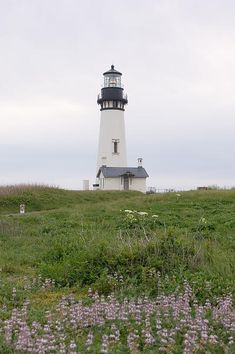 Yaquina head lighthouse in Newport, Oregon
