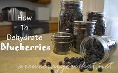 How To Dehydrate Blueberries Step by Step