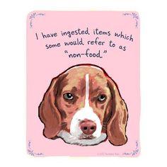 eat beagl, wall art, anim, funny dogs, funni, beagles, puppi, true stories, paper toys