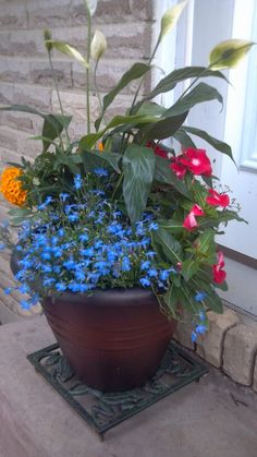 Beautiful planter arrangement with peace lillies and marigolds