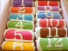 Set of 12 Month 2 Month Milestone Baby Girl by Month2MonthBabyco, $74.99