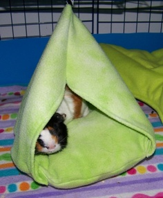 Guinea pig cage ideas cavy diy on pinterest guinea for How to make a guinea pig bed