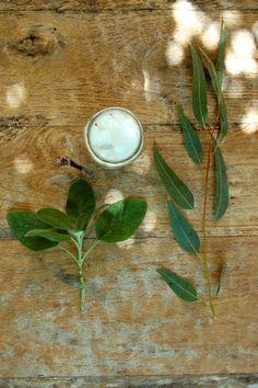 How To Make Herbal Oils – Warm Infusion Folk Method