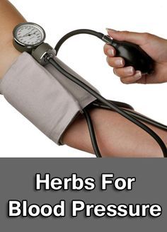 Herbs that treat blood pressure conditions.